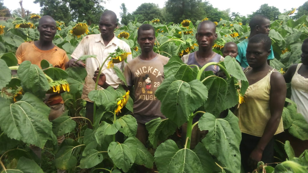 Excitement and Joy as NTH starts paying farmers using Electronic Systems